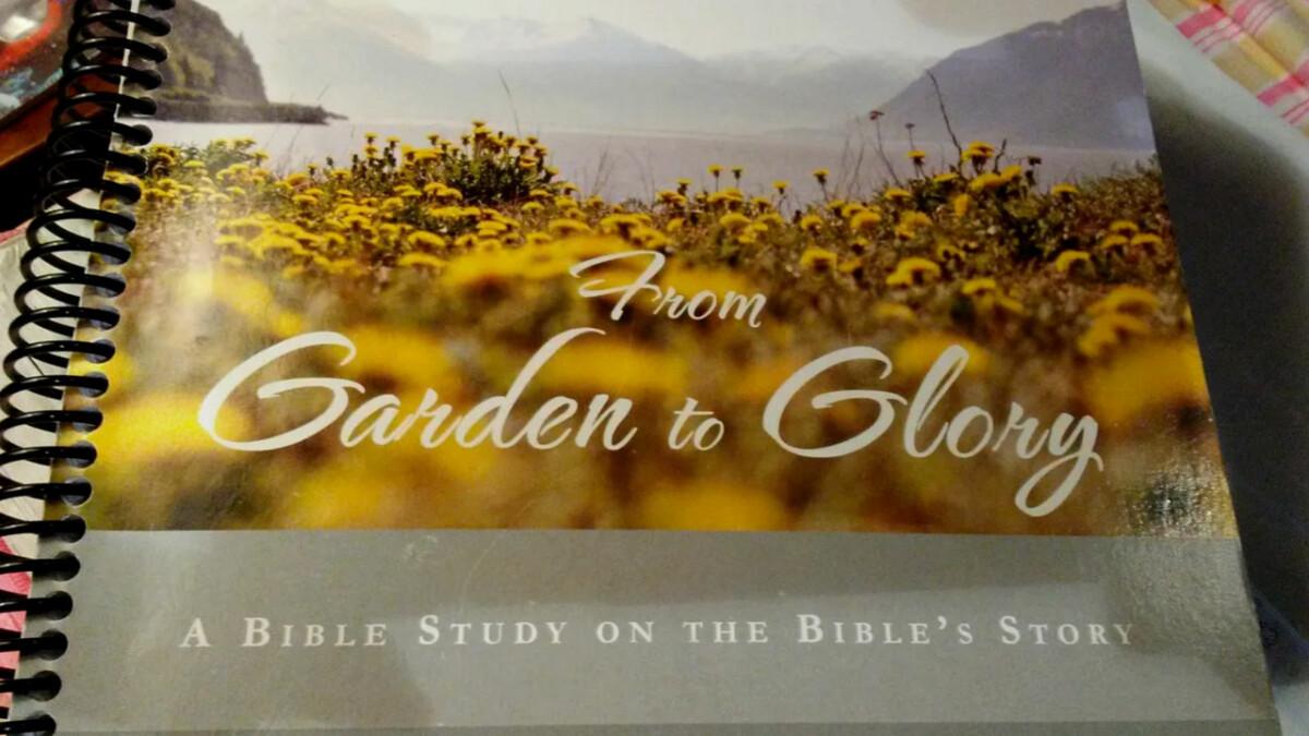 Women's Mini Series Study - From Garden to Glory