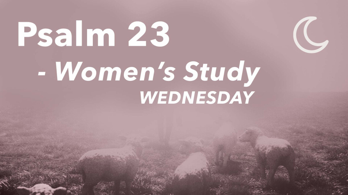 Women's Connection Mini Series: Psalm 23 - Wednesday Evenings